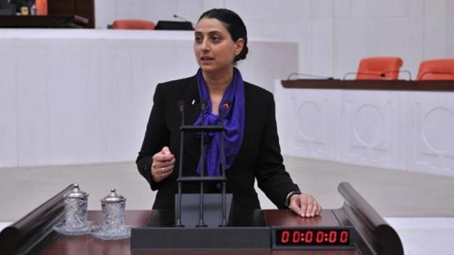 HDP+Diyarbak%C4%B1r+Milletvekili+Uca+hakk%C4%B1nda+5+ayr%C4%B1+su%C3%A7tan+fezleke
