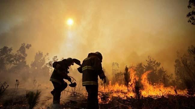 Etiyopya'nın güneyinde bulunan Sheka Ormanı'nda ki yangın cuma gününden bu yana söndürülemiyor