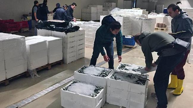 Denetimlerde 22 ton balığa el konuldu