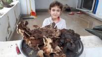 5 kilo 700 gramlık mantar görenleri şaşırtıyor