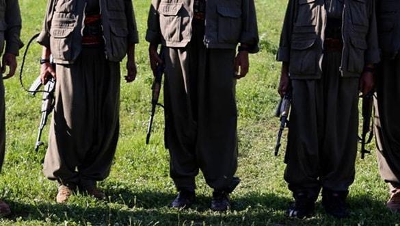 Güvenlik ve terör uzmanı Dr. Muğlu: İtirafçı teröristlere para ödülü örgütü çökertir