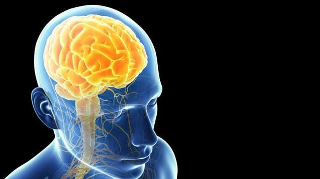 Beyin, yaşam boyunca yeni hücreler üretebiliyor