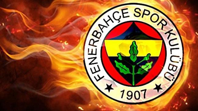Ljubomir Fejsa Fenerbahçe'de