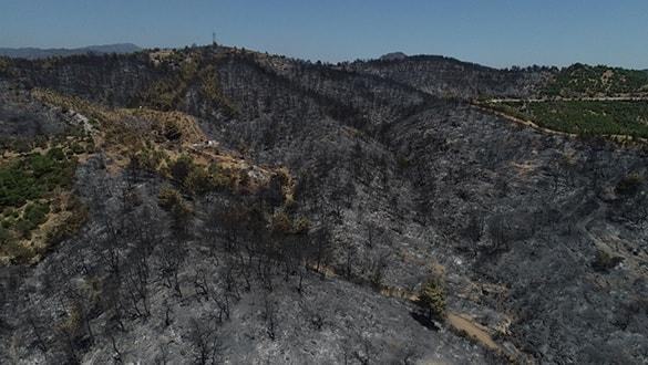 İzmir Karabağlar'da çıkan yangın kontrol altına alındı