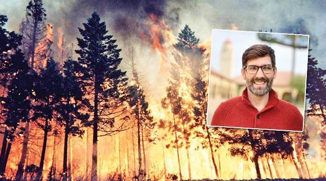 Ormanlar yanamayacak