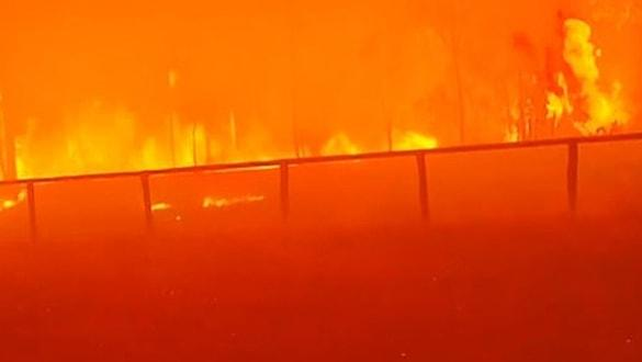 Avustralya'da büyük felaket! 30 ev yandı