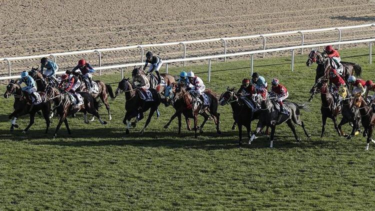 Varlık Fonu'ndan at yarışı bahis açıklaması