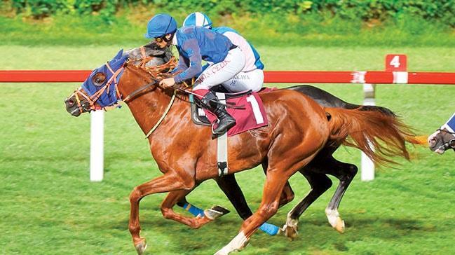 At yarışları özel sektöre devredilecek