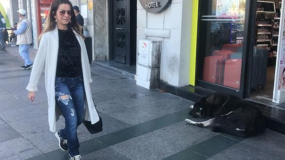Taksim'de korkutan olay! 1 ayda 30 kişiyi hastanelik etti
