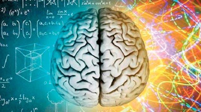 Beynin yarısıyla dayaşam sürdürülebiliyor