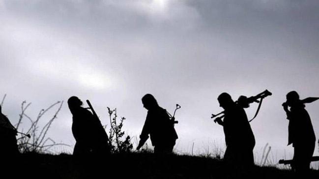 Terör örgütü PKK'da çöküş sürüyor! Güvenlik güçlerine teslim oldular