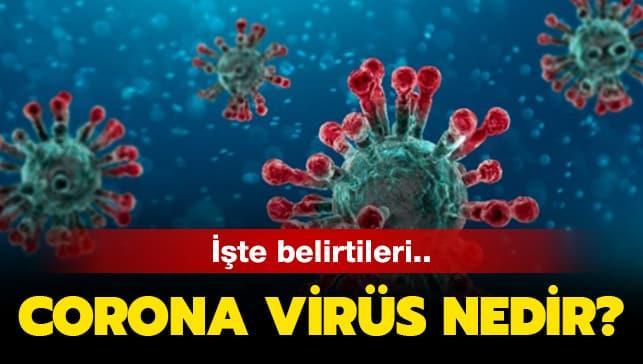 """Korona virüsü nasıl tedavi edilir"""""""
