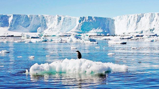 Antarktika yanıyor... Hava sıcaklığı 20.7 derece oldu!