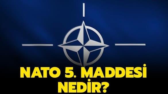 """NATO 5. maddesi nedir"""" NATO nedir, NATO ülkeleri kimlerdir""""  İşte cevabı!"""