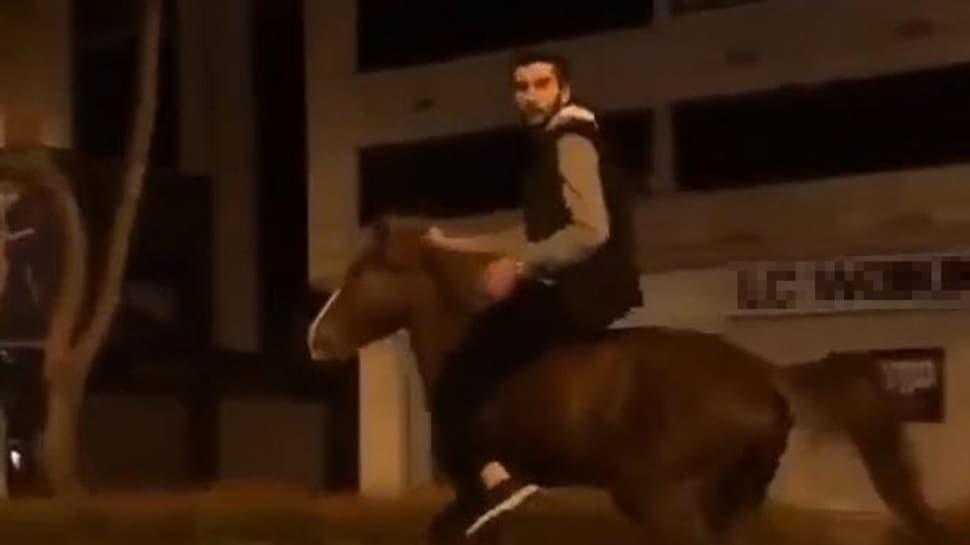 Hababam Sınıfı'ndaki o sahne gerçek oldu: 'At beni kaçırdı'