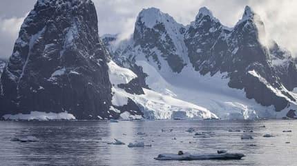 Yeni bir ekosistemin başlangıcı olabilir! Antarktika'da eriyen kar yüzeyinde yosun örtüleri ortaya çıktı