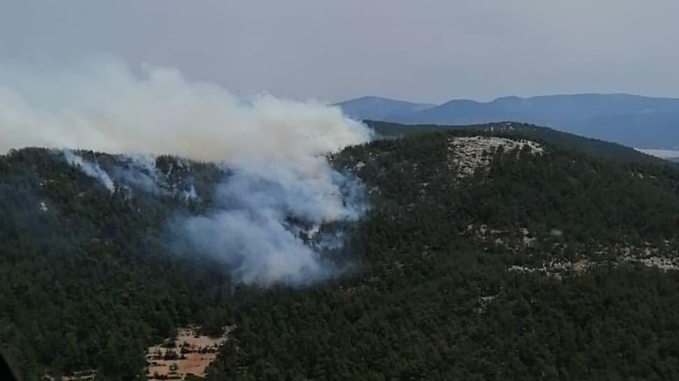 Muğla Milas'ta orman yangını çıktı