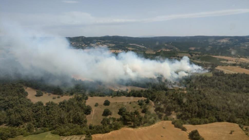 Çanakkale'de orman yangını!