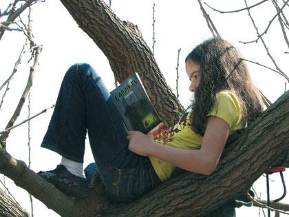 Elif Cebenoyan a�ac�n tepesinde okuyup AK�AM K�TAP'a yazd�: �ARPIK EV