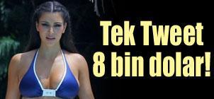 Tek+Tweet+8+bin+dolar%21;